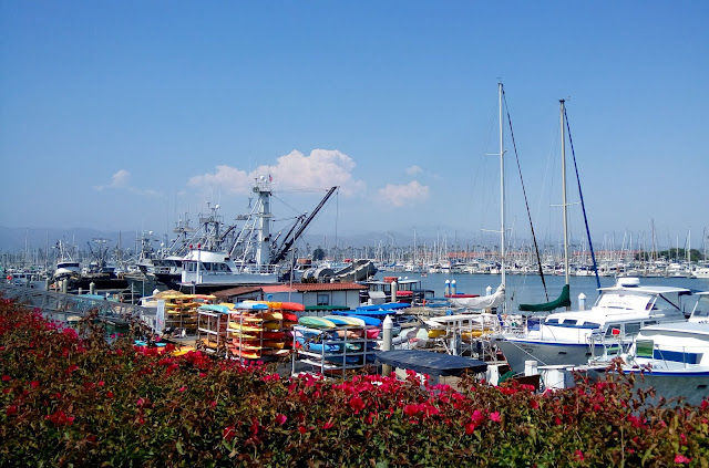 Harbor Ventura Village