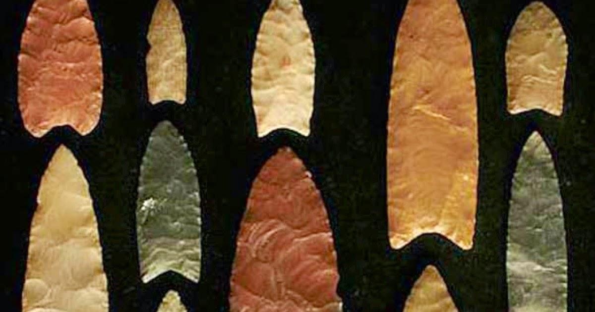 paleoantropolog237a hoy filogenia de las puntas lanceoladas