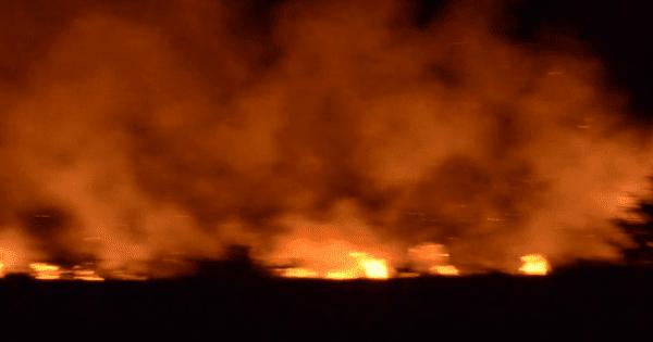 Δραματικό βράδυ στην Ηλεία από την πύρινη λαίλαπα που έκαψε σπίτια - Εκκενώθηκε η Σκιλλουντία (βίντεο)