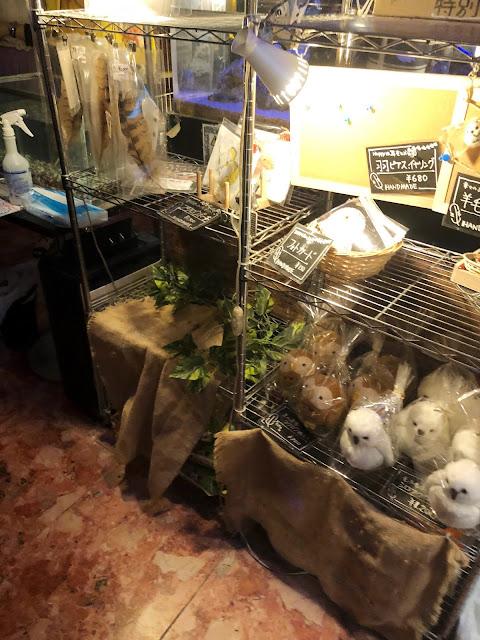 Café à Hiboux à Akihabara