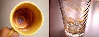 gelas propolis mengandung beeswax lilin lebah