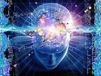 human brain,power of the human brain