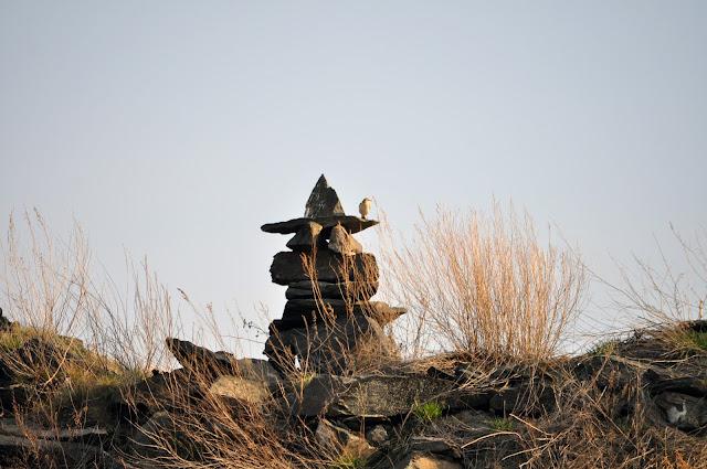 Птичка на фигуре из камней