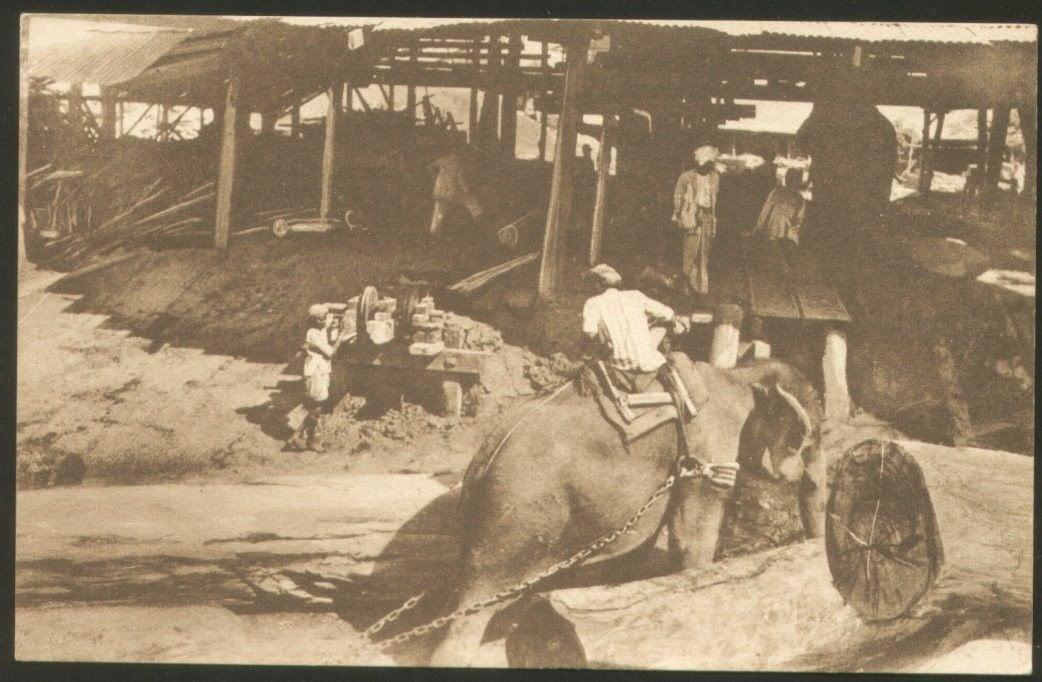 Vintage Post Cards of Burma (Myanmar) Elephants