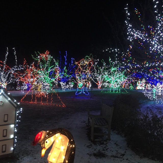 Incredible number of lights at Lilacia Park's Holiday Lights