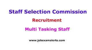 Multi Tasking Staff