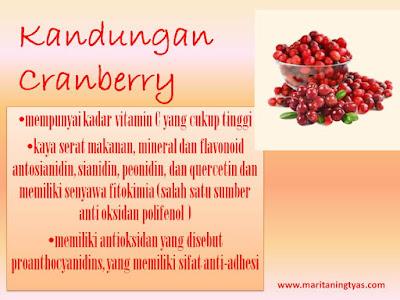 Kandungan cranberry solusi alami anyang-anyangan