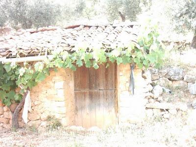 La pileta, camino, pantano de Pena, embalse, finca, almendros, olivos 6
