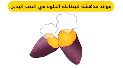 فوائد البطاطا الحلوة المسلوقة, فوائد البطاطا الحلوة للرجيم, فوائد البطاطا الحلوة لزيادة الوزن, فوائد البطاطا الحلوة للاطفال, فوائد البطاطا الحلوة لمرضى السكر, فوائد البطاطا الحلوة للجنس, فوائد البطاطا الحلوة للحامل, ,فوائد البطاطا الحلوة للبشرة اضرار البطاطا الحلوة,