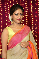 Anu Emanuel Looks Super Cute in Saree ~  Exclusive Pics 050.JPG