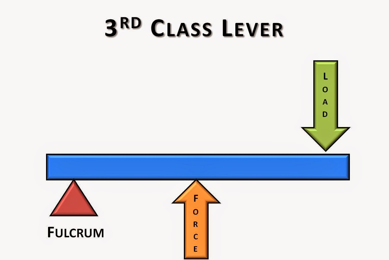 Science Online The Types Of The Levers And The Importance Of Each