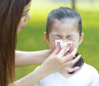 Virus Flu Dapat Menular Sebelum Munculnya Gejala Virus Flu Dapat Menular Sebelum Munculnya Gejala