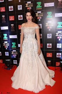 Bollywood Celebrities on the Red Carpet Of Zee Cine Awards 2017 Exclusive 088.JPG