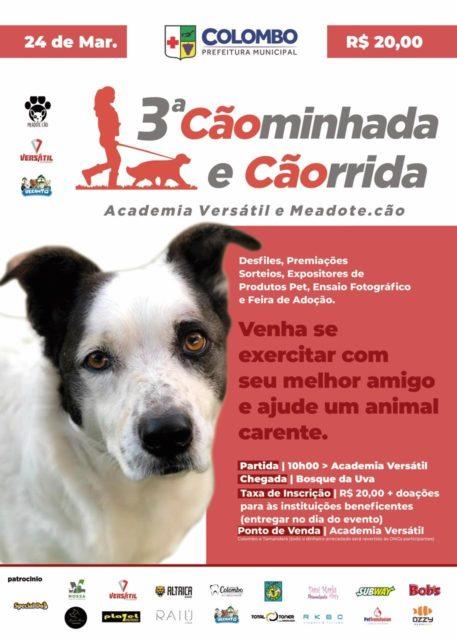 12º Feira de Adoção de Animais acontece esse mês