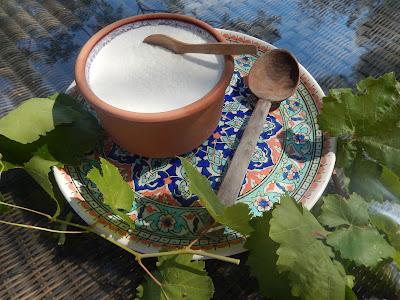Yogurt Etiquette – BacktoBodrum