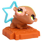 Littlest Pet Shop Special Hamster (#699) Pet