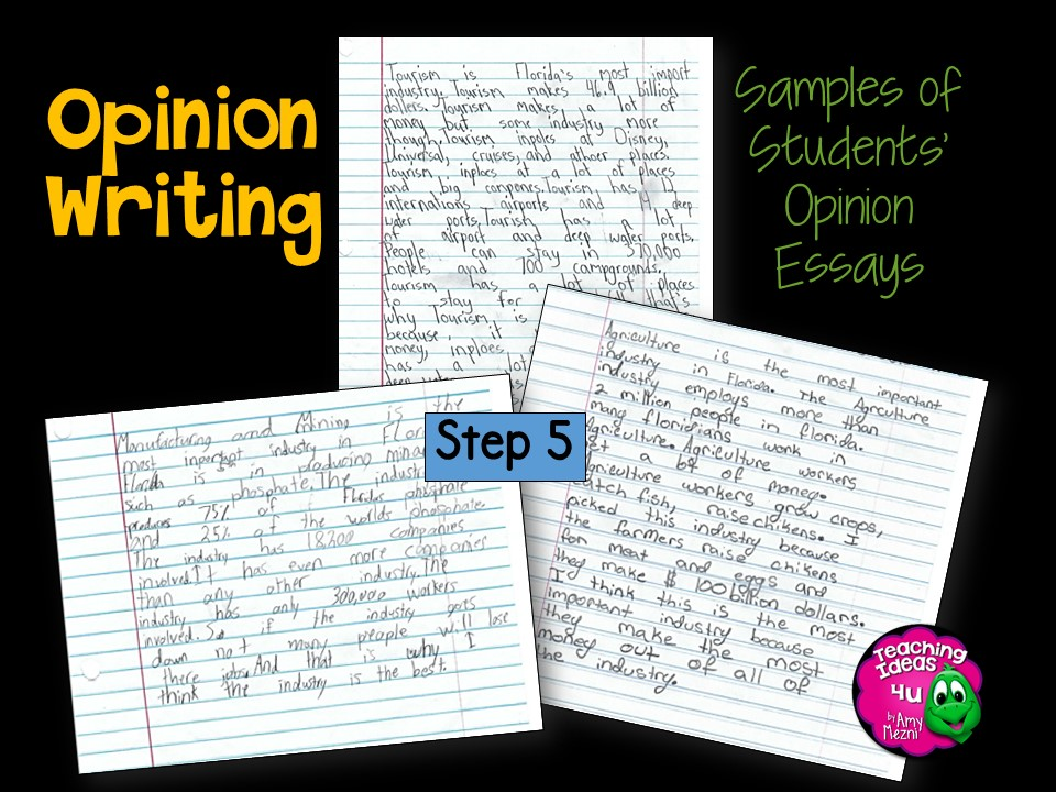 An Opinion Essay  teaching how to write an opinion essay