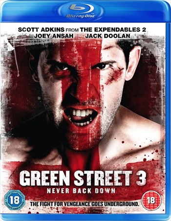 Green Street 3 Never Back Down 2013 Dual Audio Hindi Bluray Download