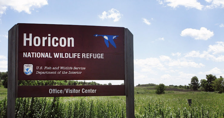 Wisconsin's Secret Wilderness is Found at Horicon National Wildlife Refuge