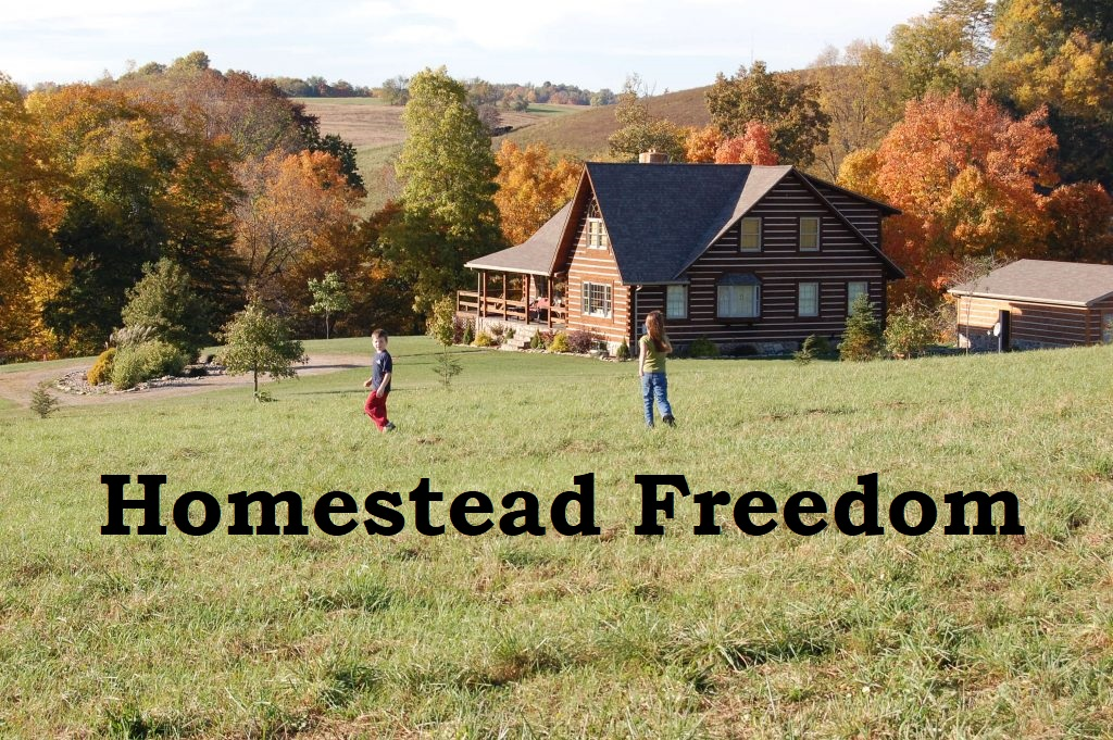 Homestead Freedom