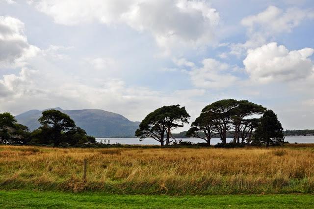 Irland 2014 - Tag 4 | Muckross House & Wanderung um den Muckross Lake