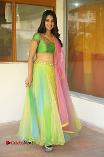 Actress Nikitha Bisht Stills in Lehenga Choli at Pochampally Ikat Art Mela Launch  0398.JPG