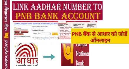 PNB Bank: How to Link Aadhaar Card Online, Offline Punjab National Bank