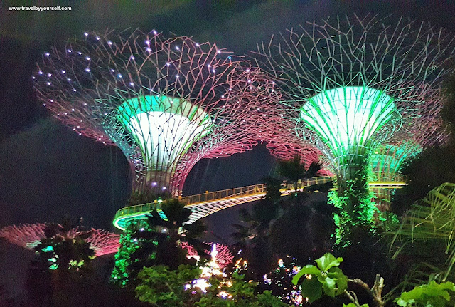 Gardens by the Bay Light Show & Music