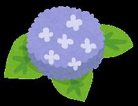 アジサイのイラスト(青紫)