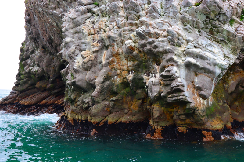 Камчатка бухта тихая базальтовые выходы тихий океан