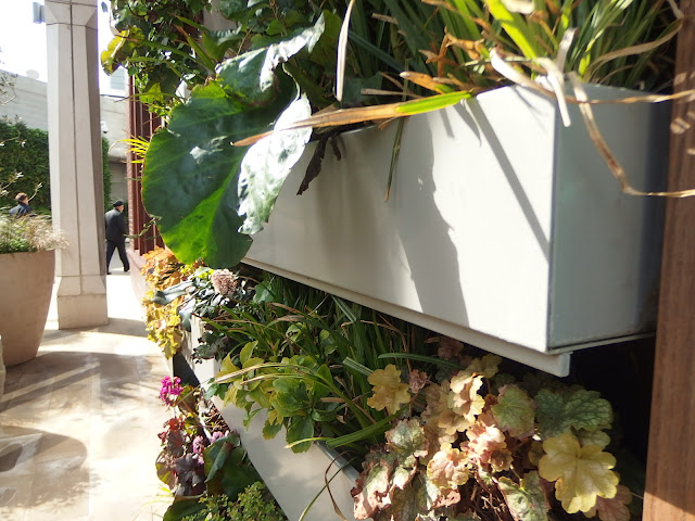 A close up of the 'window box' style planters