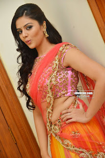 03_srimukhi_hot_in_saree_Showing_Her_Navel_In_Si.jpg