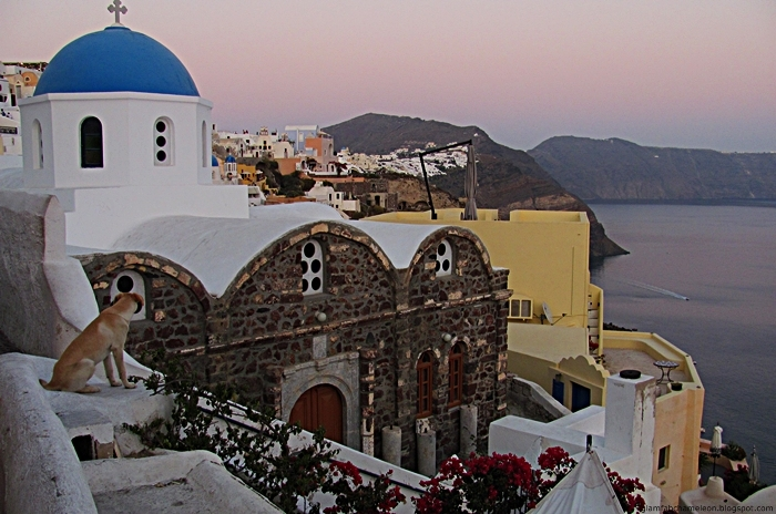 Oia in the early evening