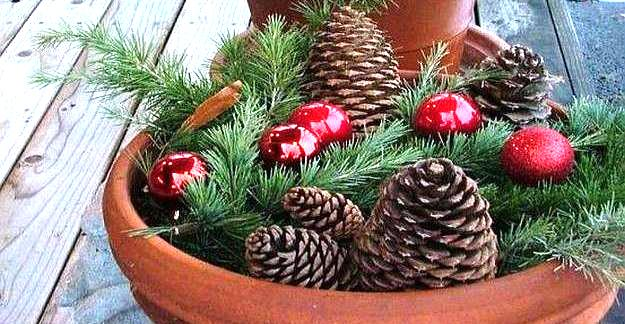 Pine cones and red Christmas baubles lying on a bed of green pine needles