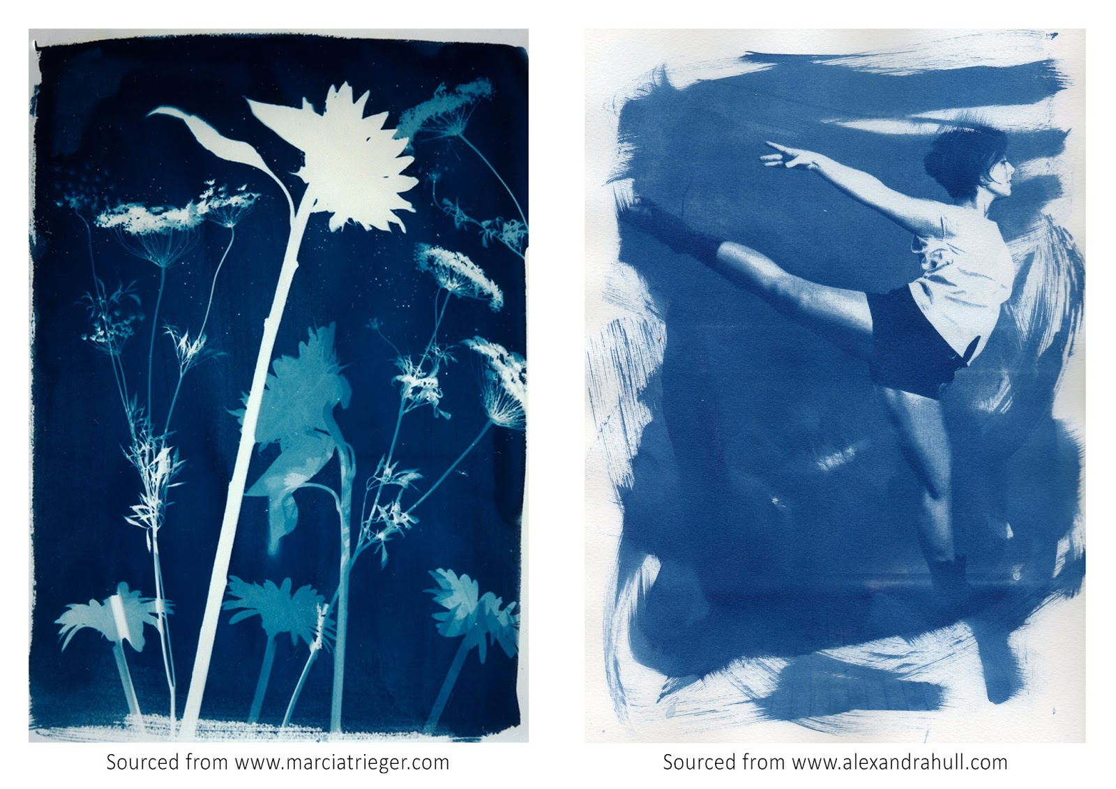 We are making cyanotype prints from scratch shannon scientific as well as using negatives to print there is also the contact process where objects are placed directly onto the paper surface if light cannot break the malvernweather Image collections