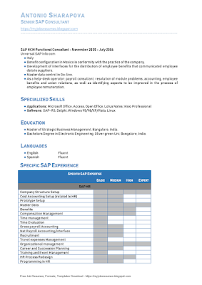 Senior Consultant SAP Resume Samples 02