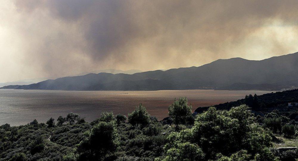 Πυρκαγιά στη Σιθωνία ΧαλκιδικήςΠρος πώληση ήταν η έκταση που κάηκε στη Σιθωνία