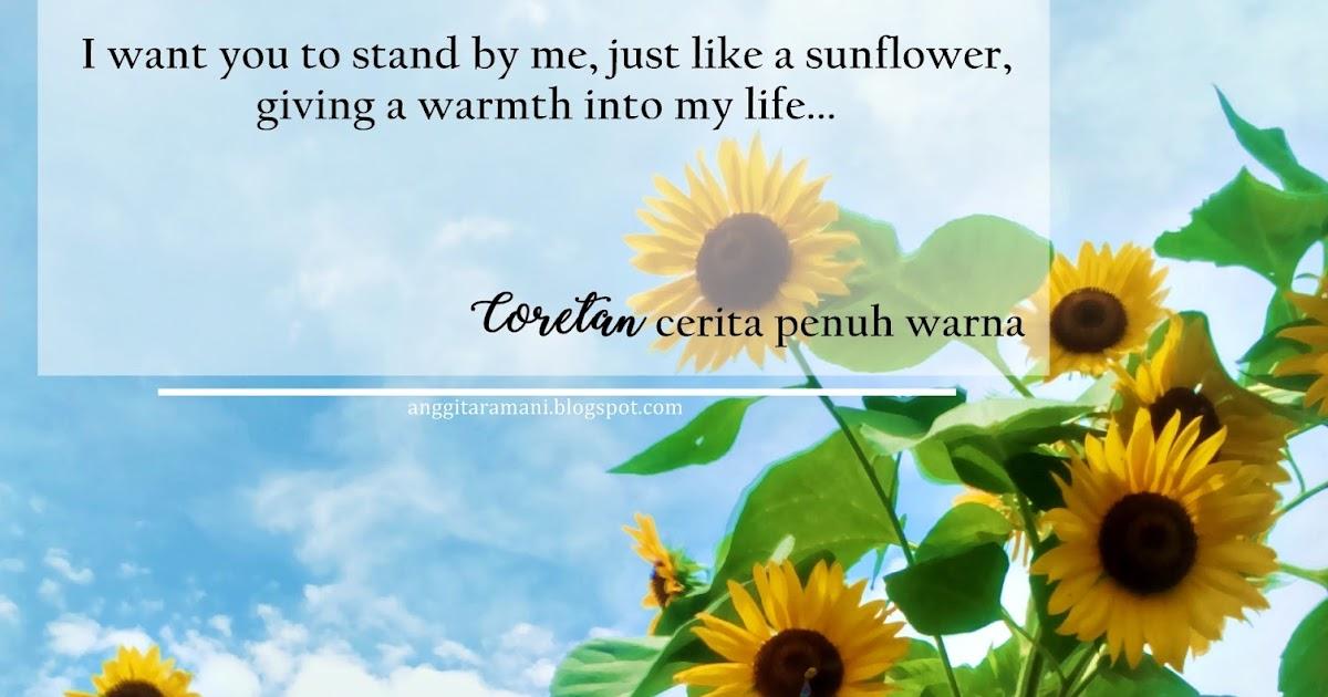 Stand By Me Kebun Bunga Matahari Kediri Coretan Warna