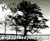 https://jahreszeitenbriefe.blogspot.com/search/label/Mein%20Freund%20der%20Baum
