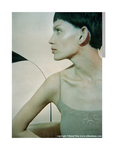http://www.edlandman.com/art-feathers.htm