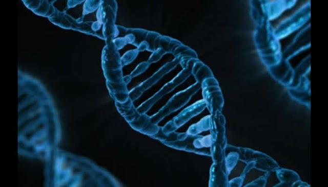Cientistas invadem computador usando malware codificado em cadeia de DNA.