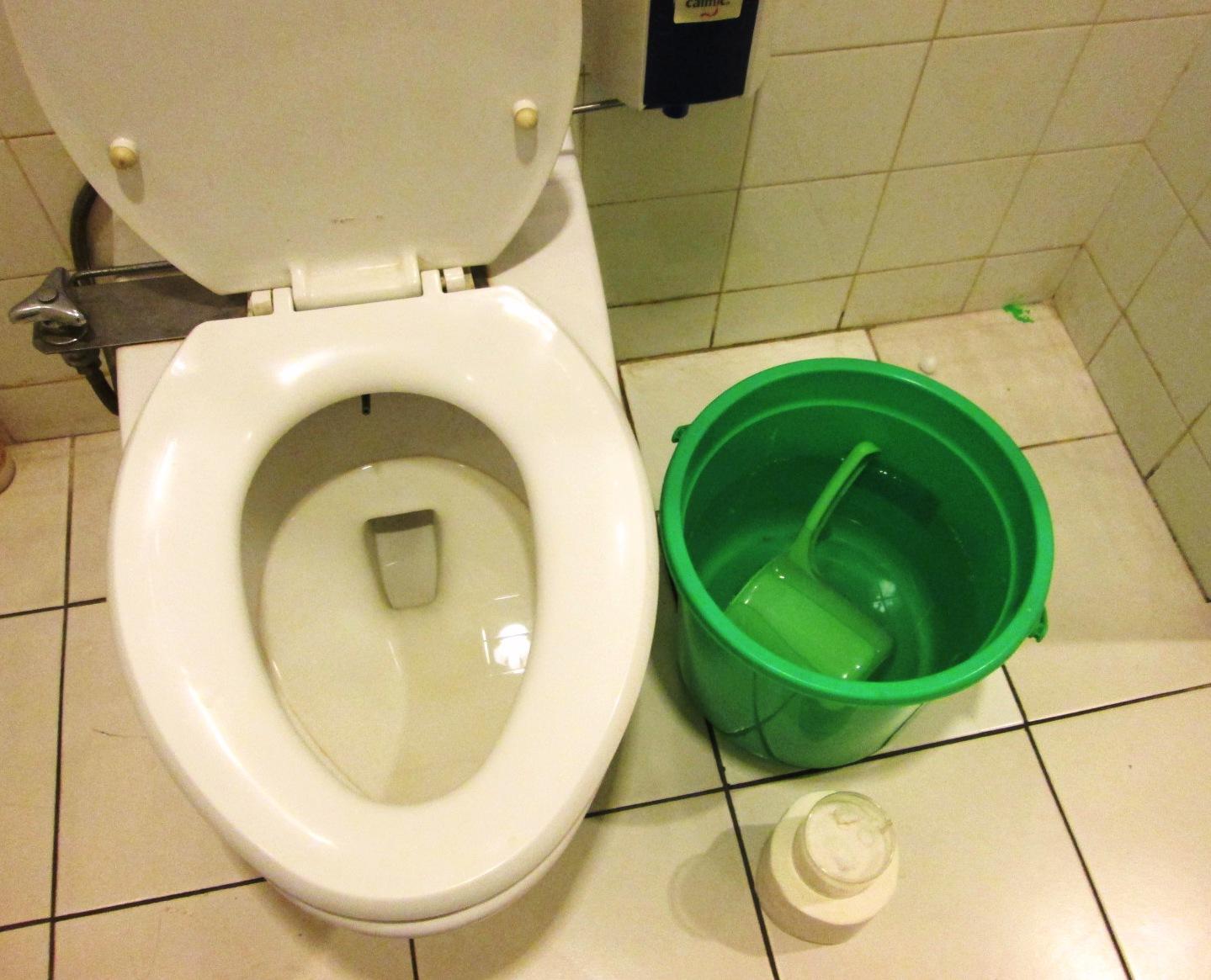 Hasil gambar untuk wc mampet