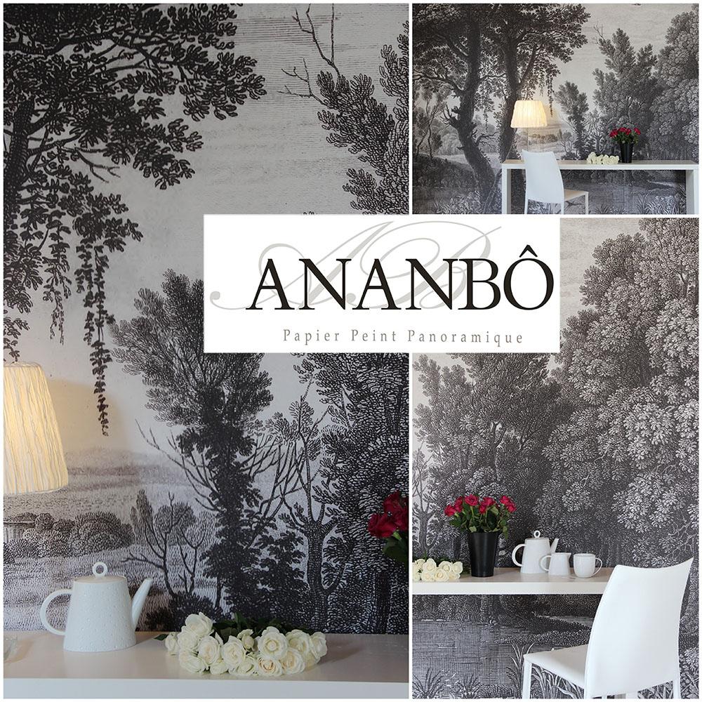 ananb campagne grisaille papier peint panoramique. Black Bedroom Furniture Sets. Home Design Ideas