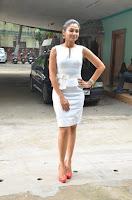 Andrea Jeremiah Stills in White Dress at Taramani Success Meet .COM 0018.jpg