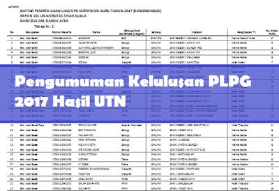 gambar pengumuman hasil tes online ppg atau PLPG 2017