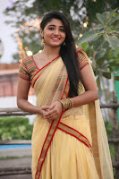 Tamil actress Aditi Menon half saree photos