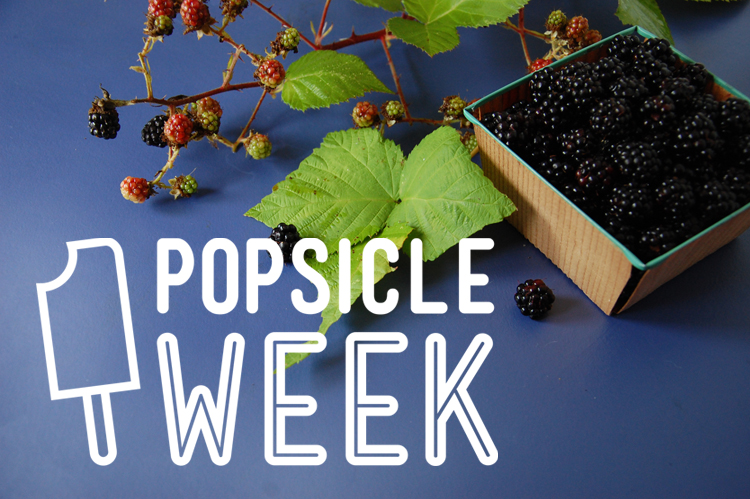 Popsicle Week • Buttermilk Blackberry Crumble Popsicles • The Bedlam of Beefy