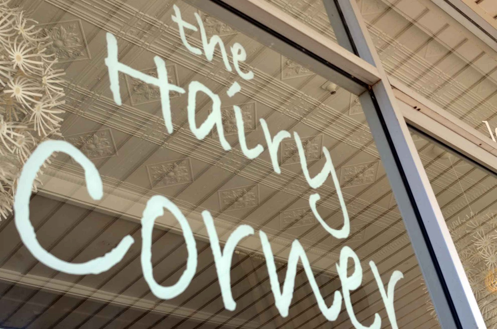 Hairy corner