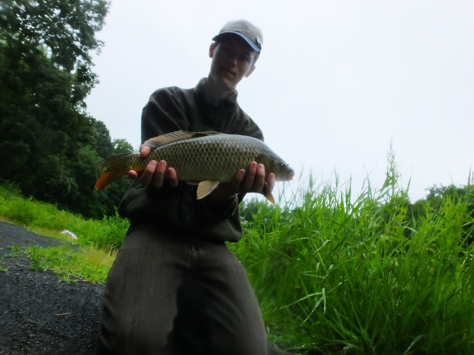 Connecticut fly angler topwater carp for Best trout fishing in ct