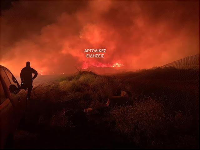 Υψηλός κίνδυνος πυρκαγιάς το Σάββατο 25 Ιουλίου στην Αργολίδα